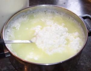 Cheese1[1]
